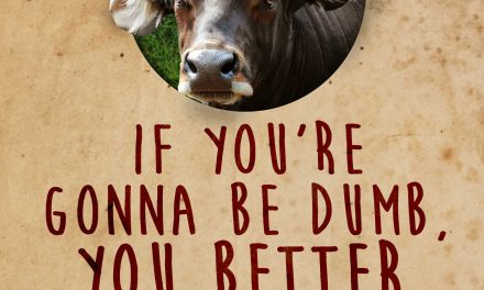 If You're Gonna Be Dumb, You Better Be Tough by Mike Broomhead