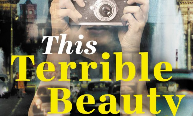 This Terrible Beauty by Katrin Schuman