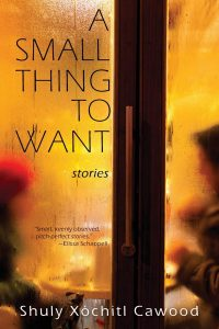 Interview: A Small Thing to Want