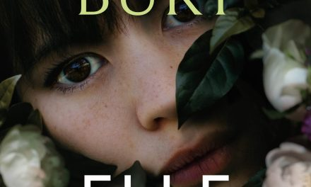 Review: Lies We Bury by Elle Marr